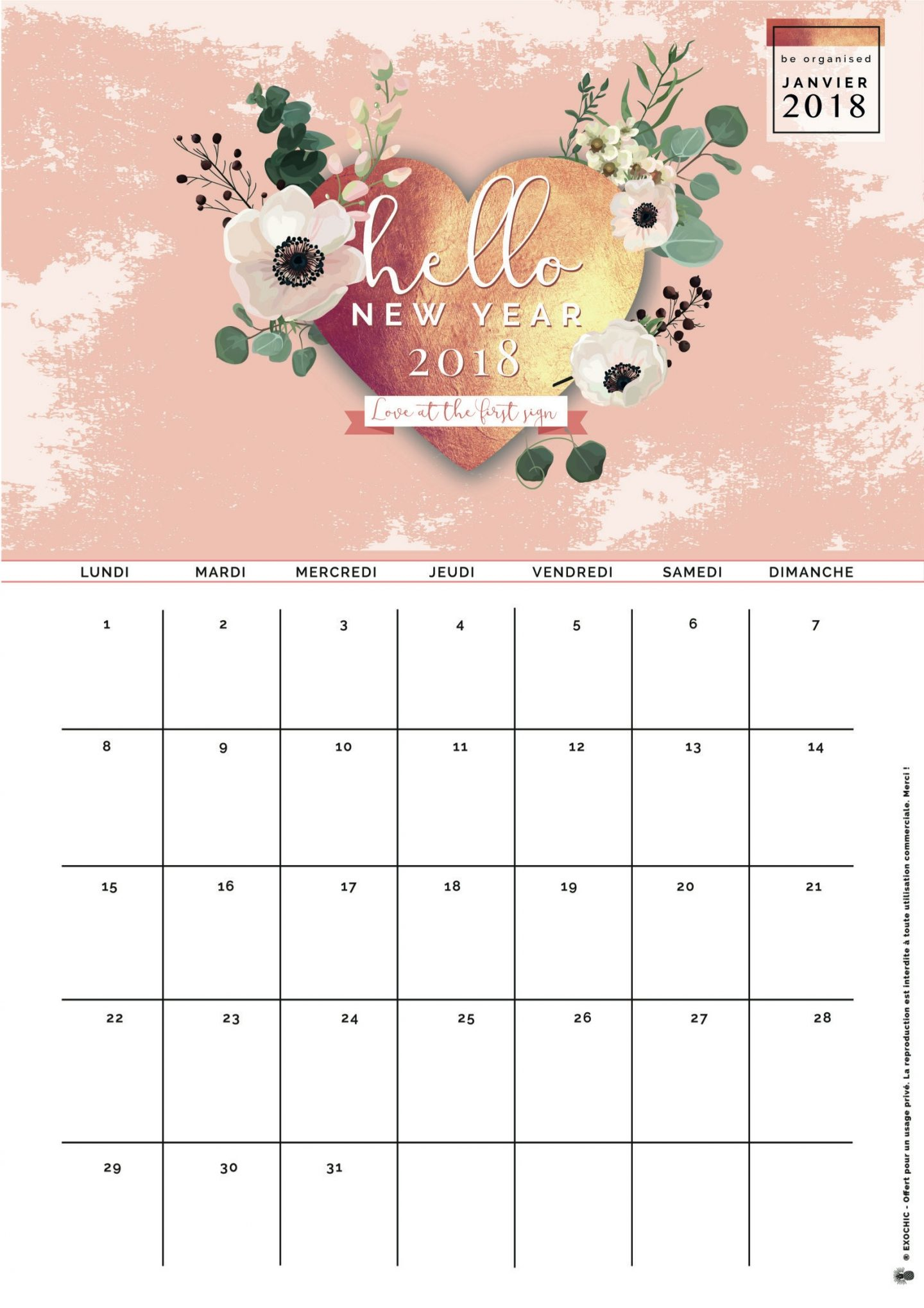 Air Chic Design:disque externe:EXOChic:1 -POSTS:1 - ARTICLES:2018:01- JANVIER:01 FOnd ecran calendrier:papier:calendrier fond ecran janvier 2018 .pdf