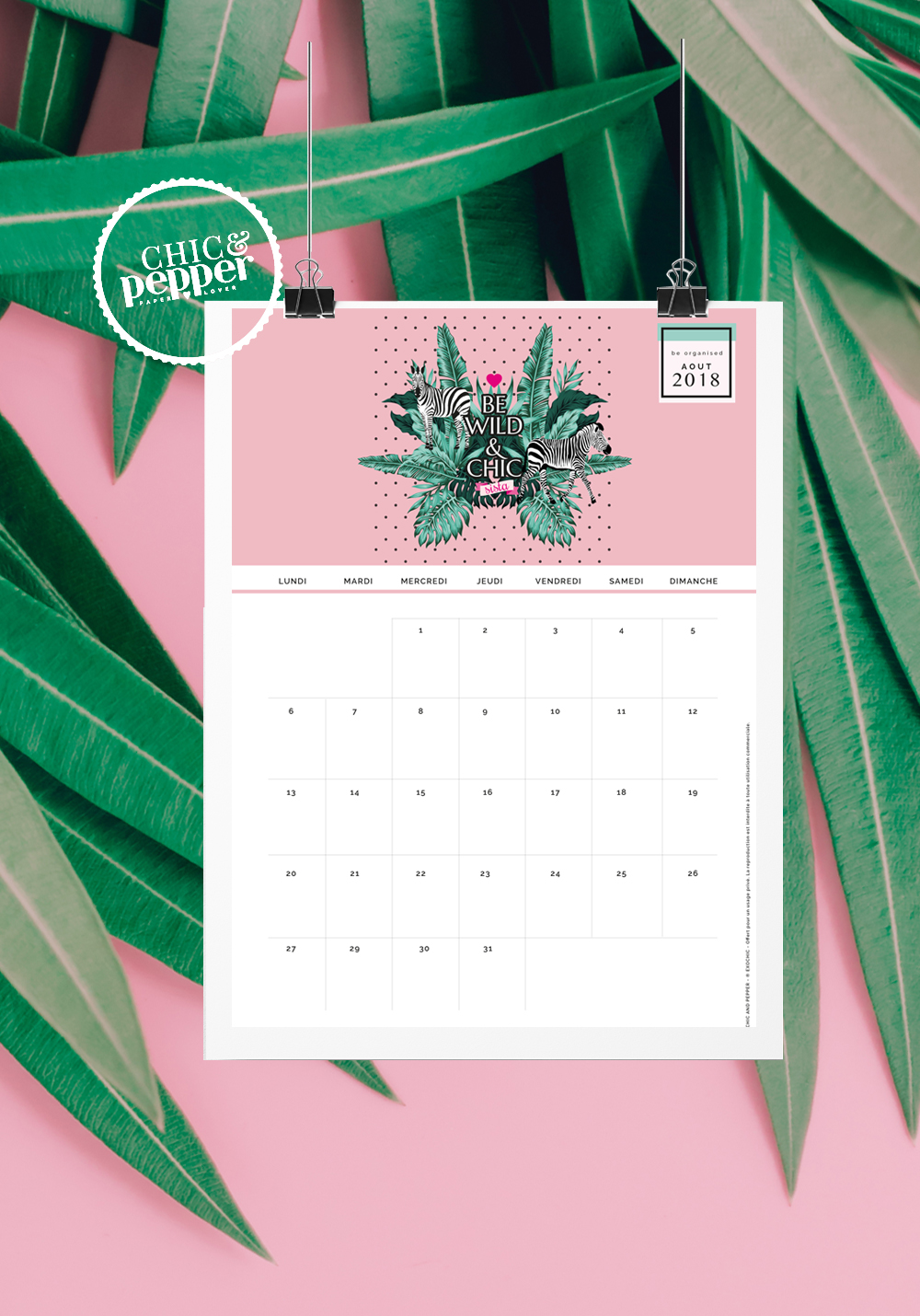 Air Chic Design:disque externe:EXOChic:1 -POSTS:1 - ARTICLES:2018:08- AOUT:01 CALENDRIER AOUT:image blog:Fond ecran Calendrier Aout EXOCHIC 2.jpg