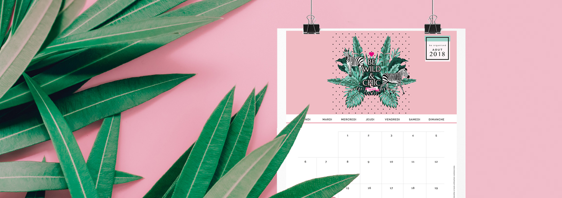 Air Chic Design:disque externe:EXOChic:1 -POSTS:1 - ARTICLES:2018:08- AOUT:01 CALENDRIER AOUT:image blog:Fond ecran Calendrier Aout EXOCHIC 3.jpg
