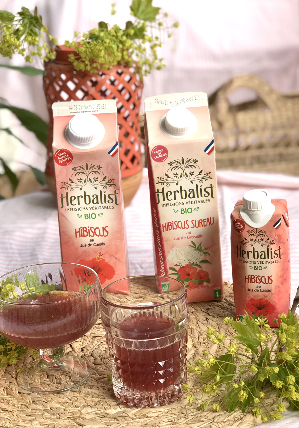 Herbalis infusions veritables exochic